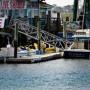 tybee-island-marina