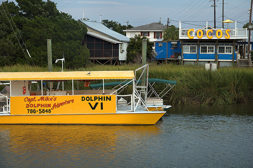 Tybee joy vacationslazaretto creek archives tybee joy for Deep sea fishing savannah ga