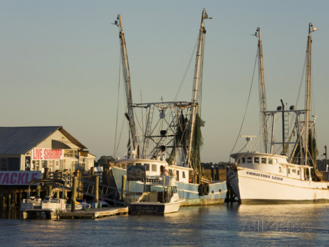 Tybee joy vacationslazaretto creek tybee joy vacations for Deep sea fishing savannah ga
